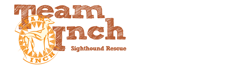 Team Inch - Sighthound Rescue