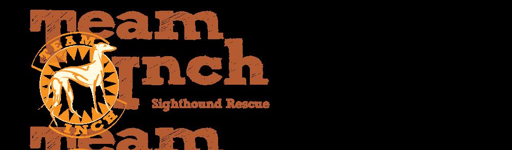 Team Inch - Sighthound Rescue